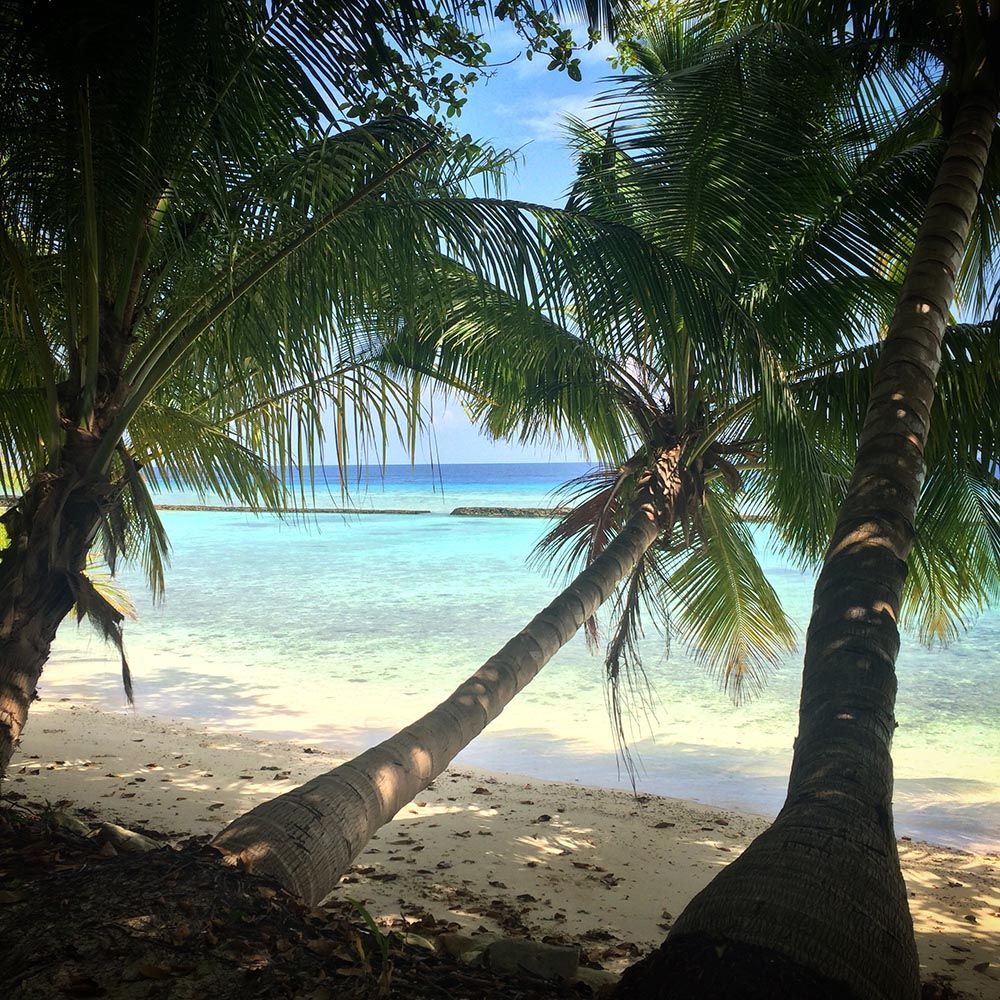 Travel with Kids, Malediven, Kuramathi