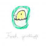 6_PostkarteFrischGeschluepft