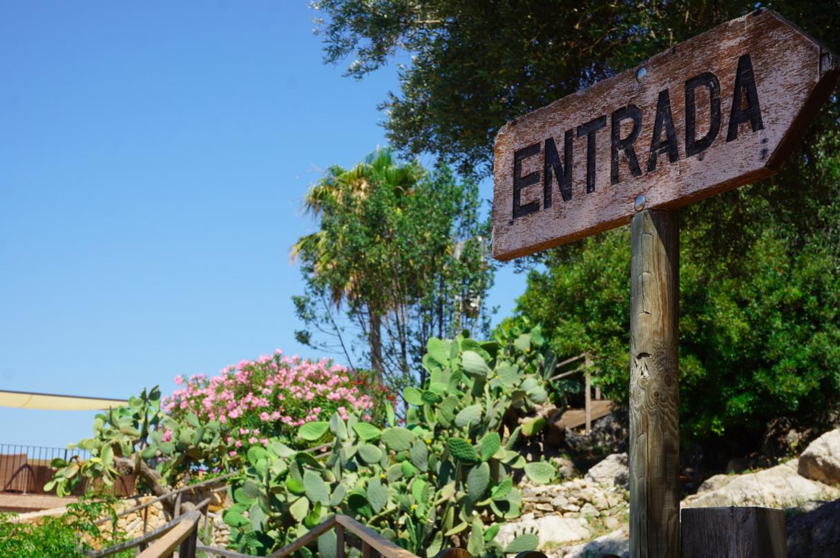 Travel with Kids in Arta Mallorca 2015