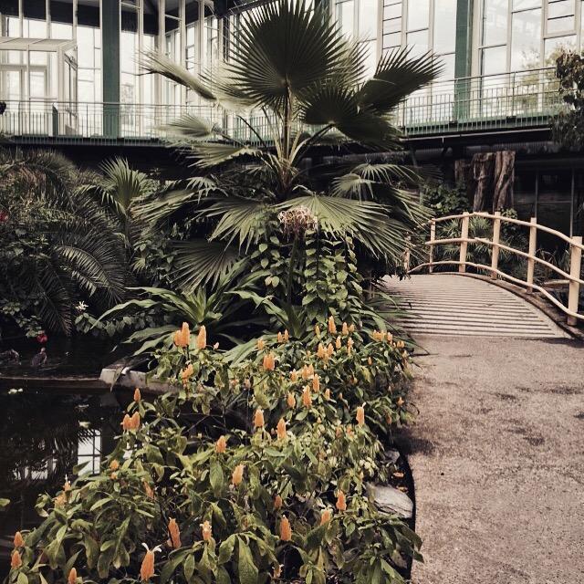Janines Lieblingsplätze Berlin mit Kind Tierpark Friedrichsfelde