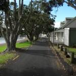 Barbara_und Jan_Franzreb_travelwithkids_Neuseeland_Allee