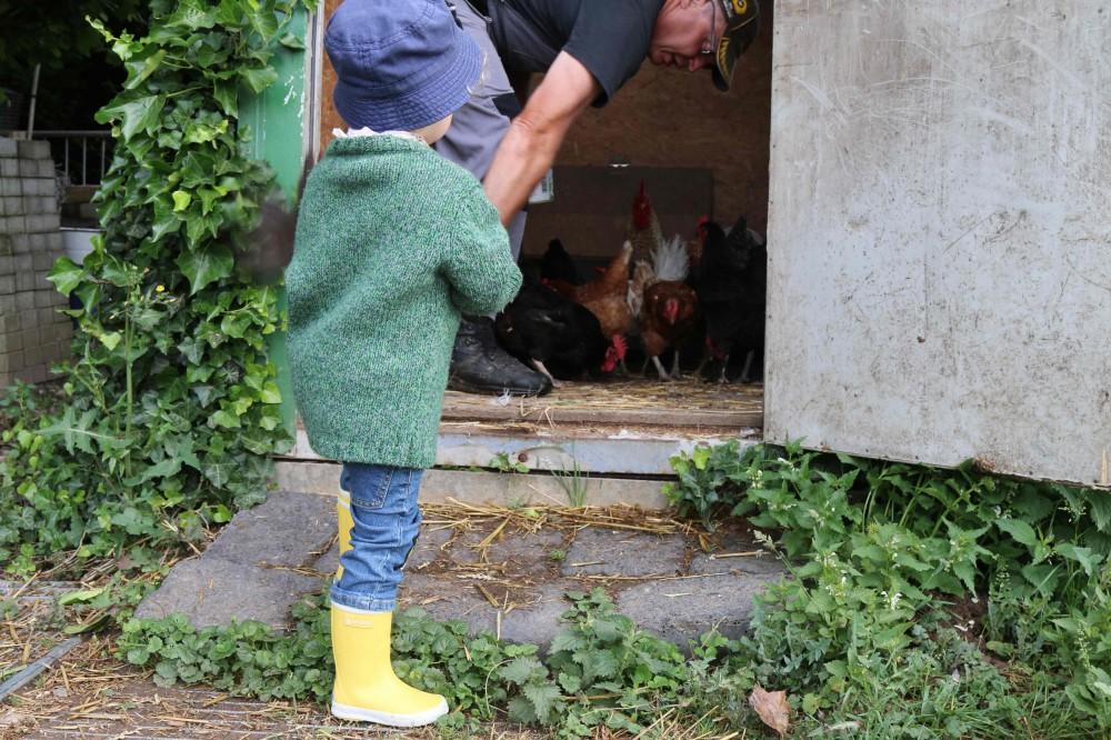 Wiesenbett_Dinserhof_Urlaub auf dem Bauernhof mit Kindern_2990