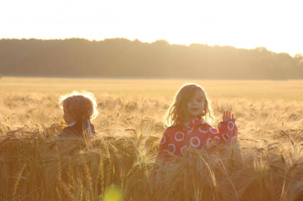 Wiesenbett_Dinserhof_Urlaub auf dem Bauernhof mit Kindern_3637