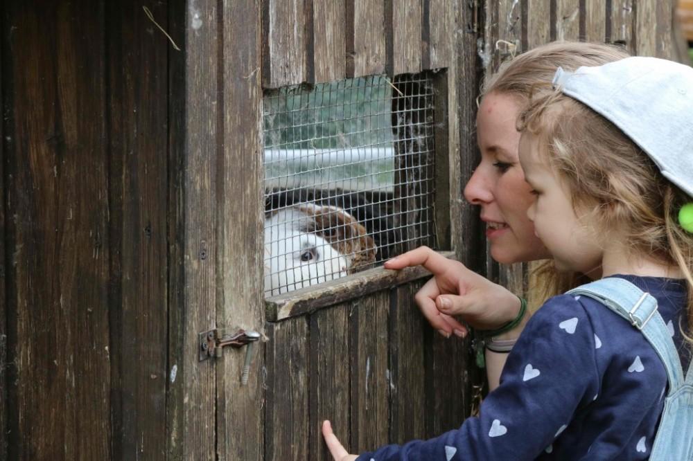 Wiesenbett_Dinserhof_Urlaub-auf-dem-Bauernhof-mit-Kindern_3788-1024x682