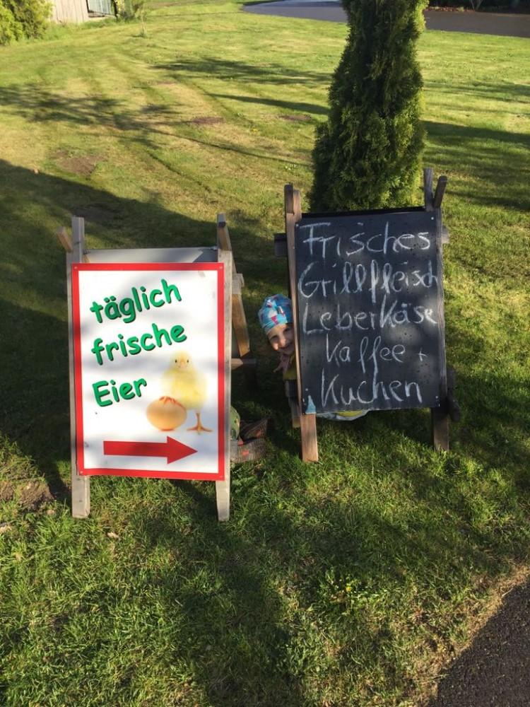 Bauernhof Eier Gut Gollin