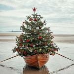Oh ha, Tannenbaum <br/>Schönster Schmuck für den Weihnachtsbaum