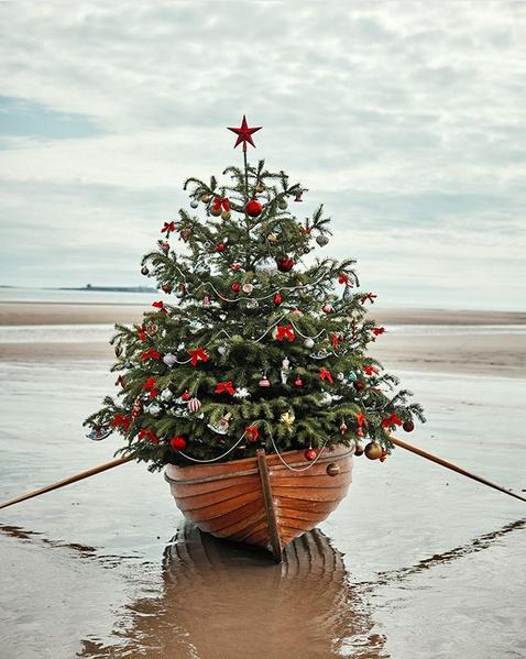 Ursprung Weihnachtsbaum.Schönster Schmuck Für Den Weihnachtsbaum