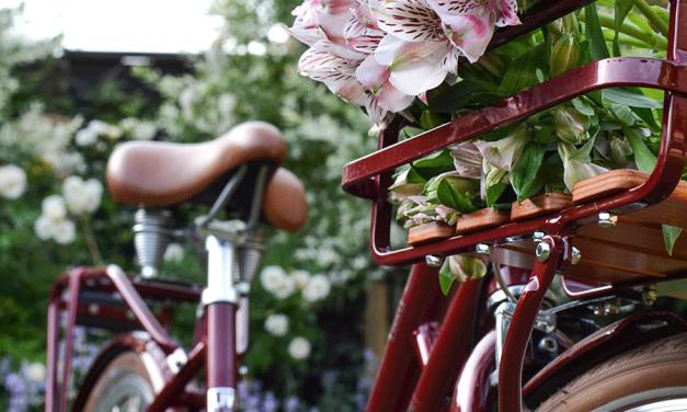 MOBILITÄT <br/> Fahrräder so bunt wie Bonbons <br/> Schönste Modelle für radelnde Eltern