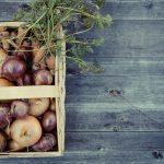 Nachhaltigkeit in der Küche