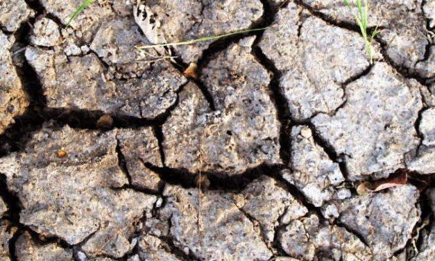 Leben in Zeiten des Klimawandels