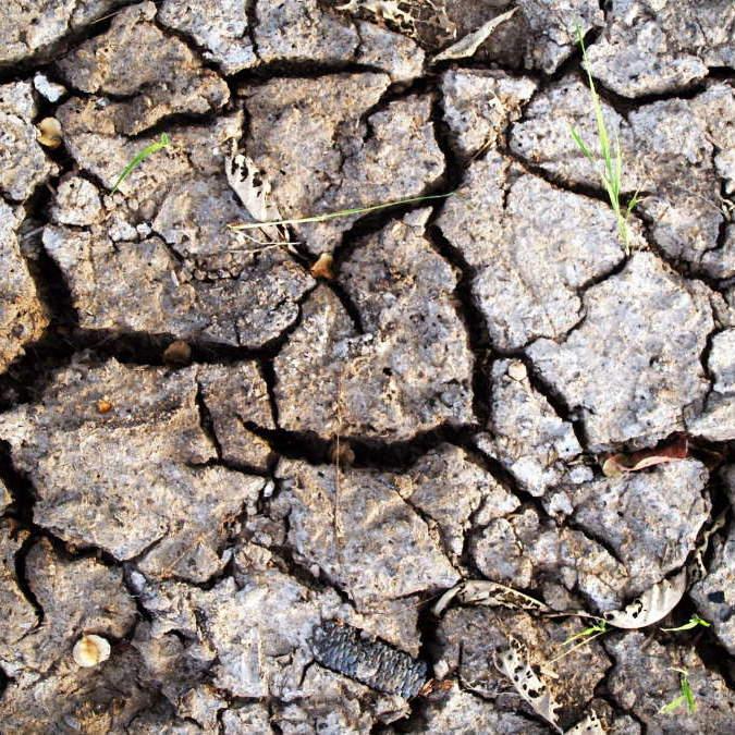 MUMMY MAG Klimawandel