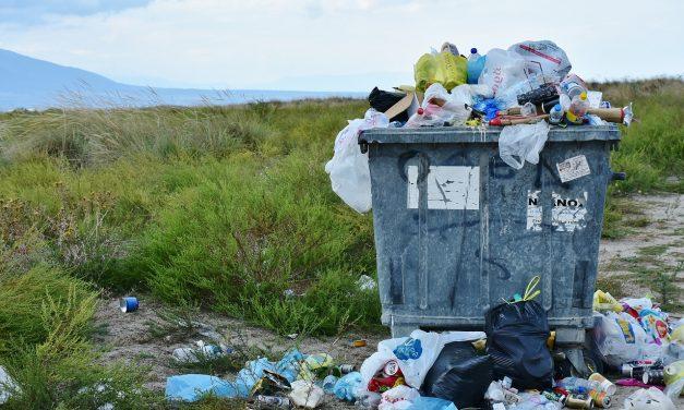 Richtig recyclen: Tipps & Tricks zum Müll trennen